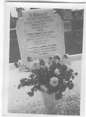 Photo shows the grave of the Jollands family which can be found in Misterton Cemetery, photo courtesy of the Misterton and West Stockwith  history group