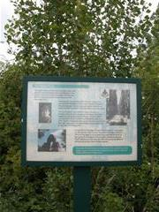 Information board on the line of the poplar trees planted in memory of 9th Bn Sherwood Foresters (WMA 59076). Photograph Rachel Farrand (June 2009)